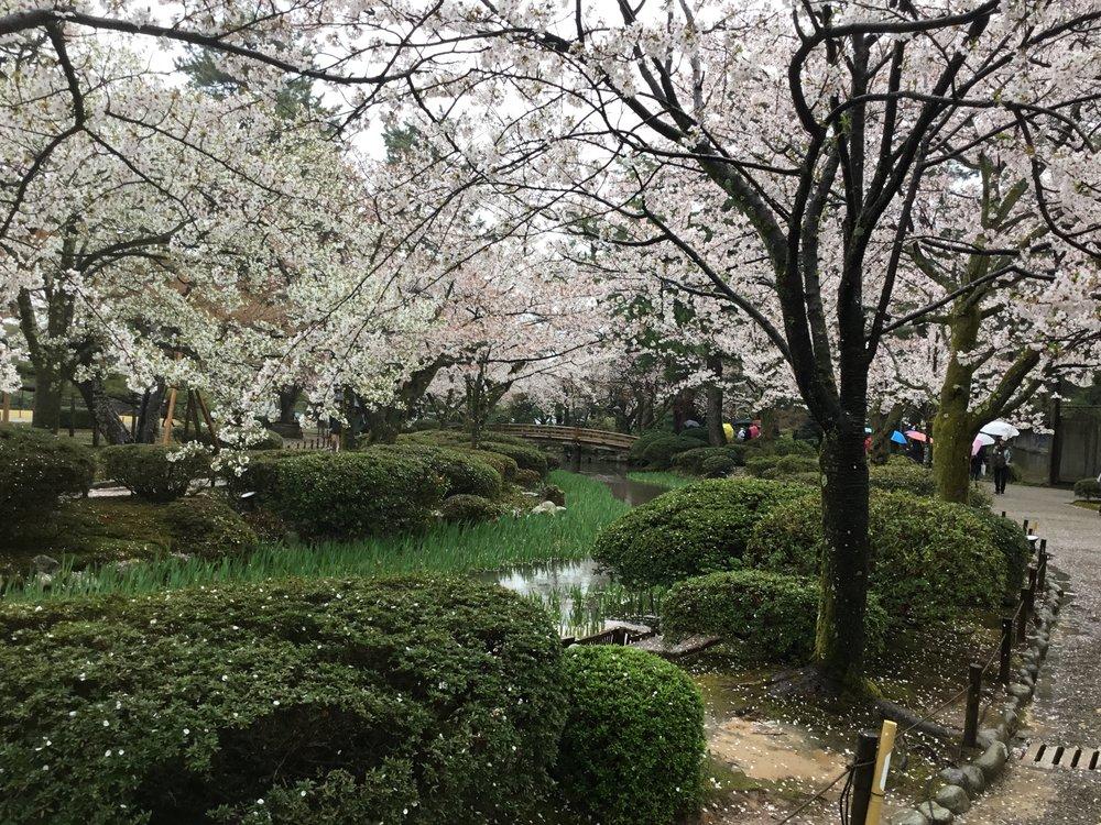 japon, japan, where to go in japan, what to do in japan, best of japan, ou aller au japon, le meilleur du japon