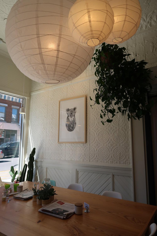 Northside espresso, Kingston
