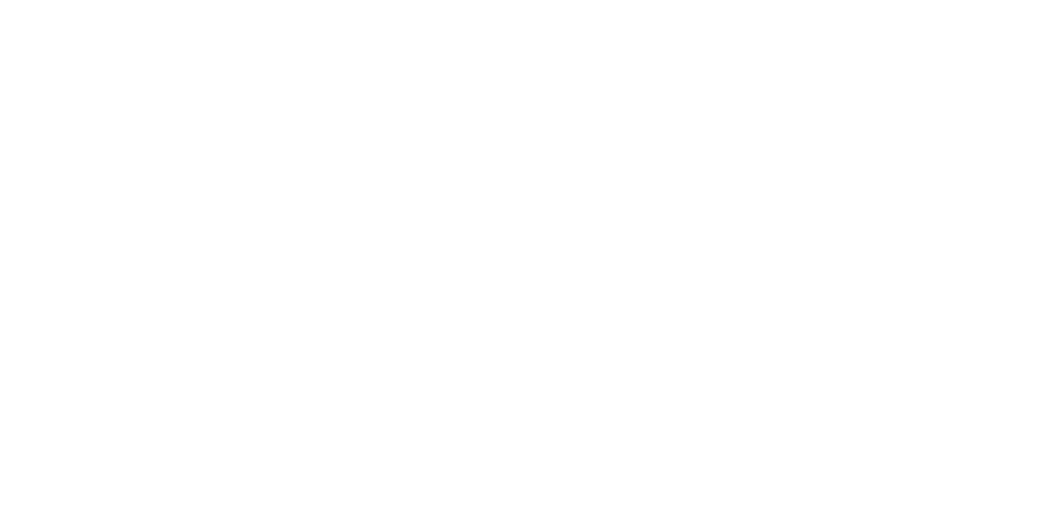The Overpass Merchant