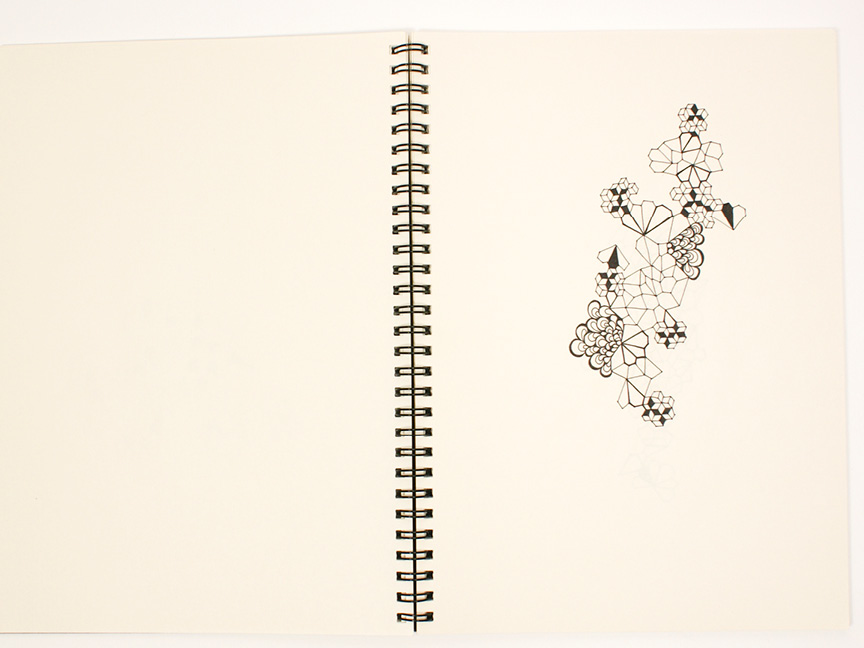 2013 sketchbook13.jpg