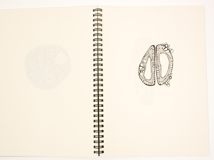 2013 sketchbook25.jpg