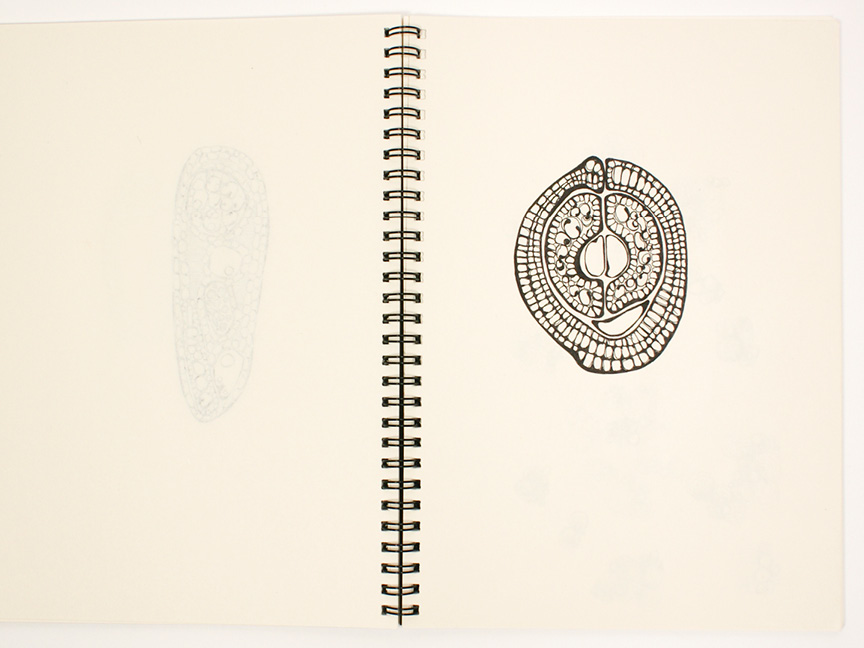 2013 sketchbook27.jpg