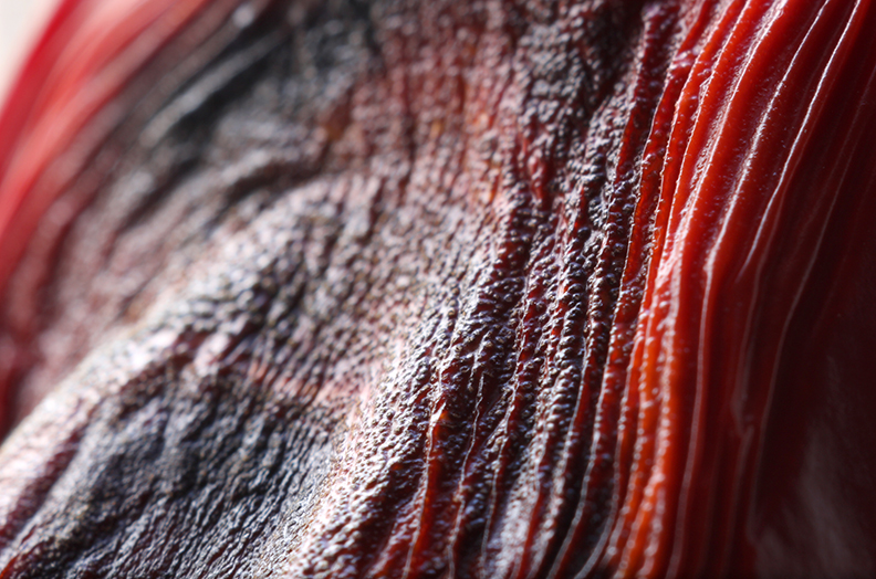 pepper dark wrinkle.jpg