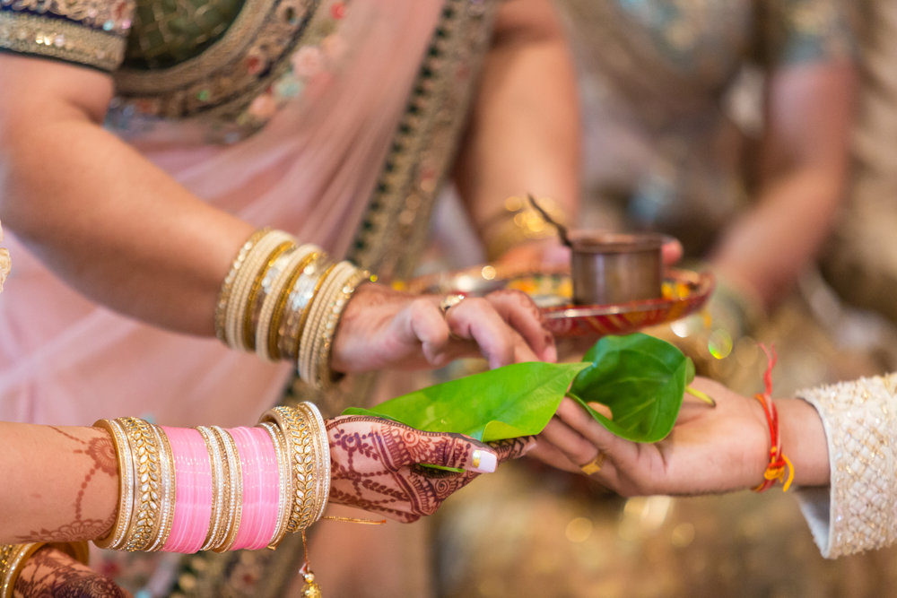 INDIAN WEDDING CERMONY EXCHANGE.jpg
