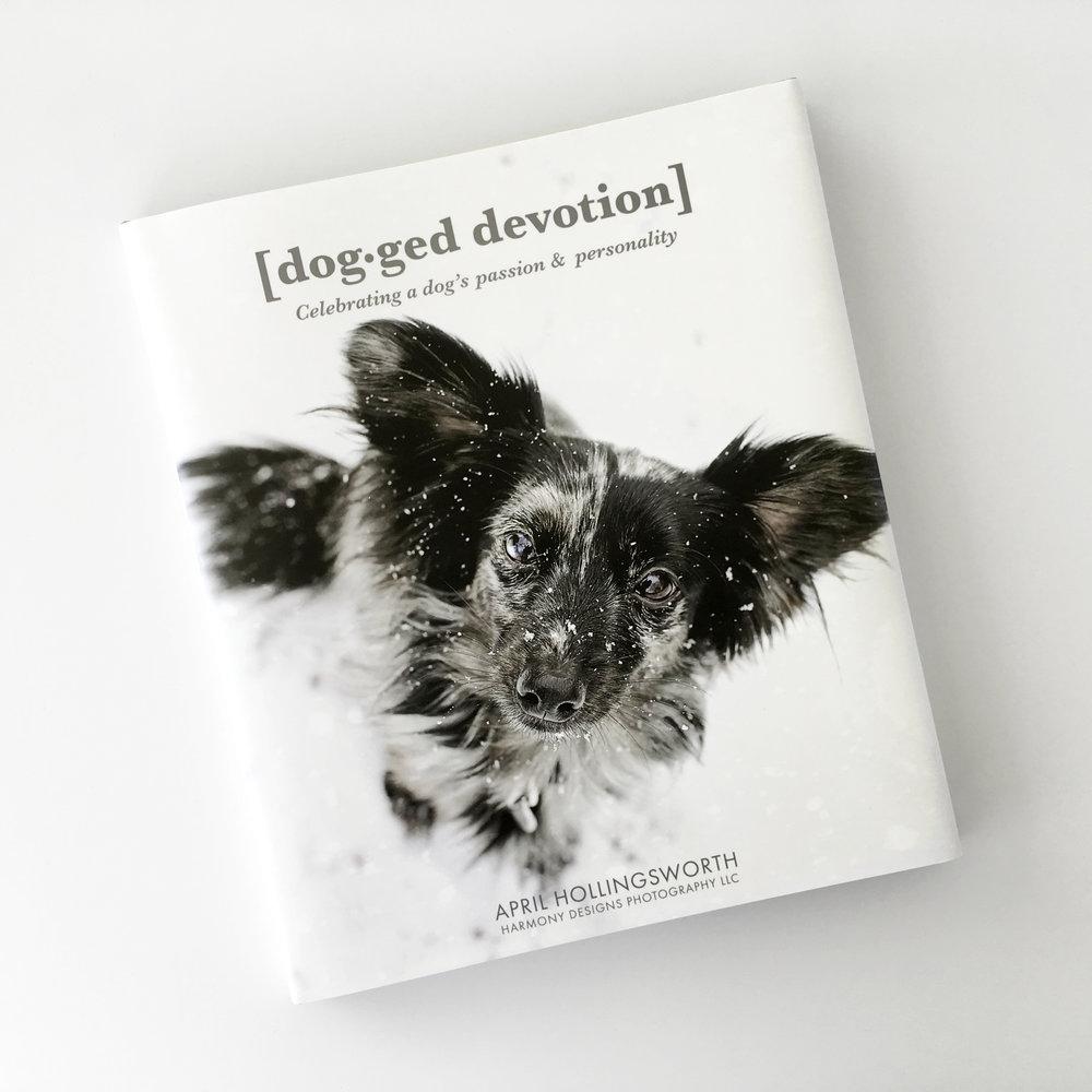 DoggedDevotion_1.jpg