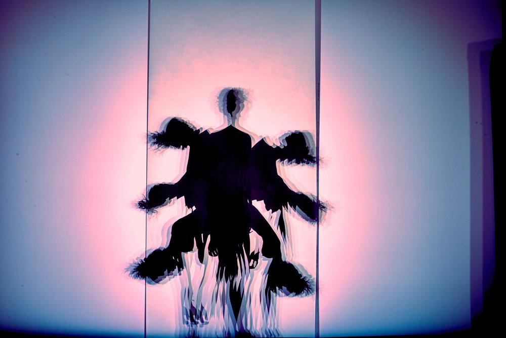 ShadowMaya 402.jpg