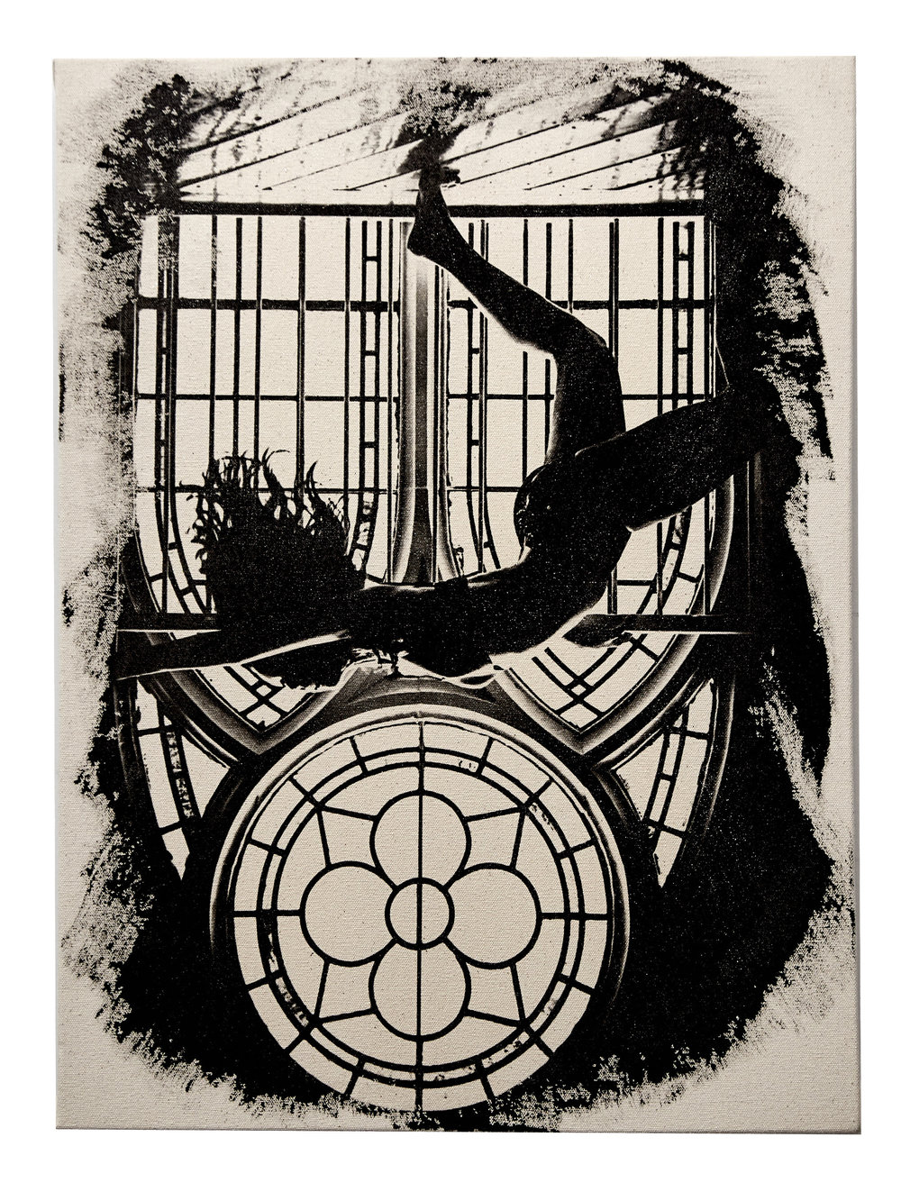 """Freefall    18"""" x 24""""   A moment with gravity and my favorite Bo   Ingredients:  Photo (White wine, Bo, Church, many laughs) Print (Tecate, Fomaspeed, Ethenol, Proprietary Chemical Blend & Process)"""