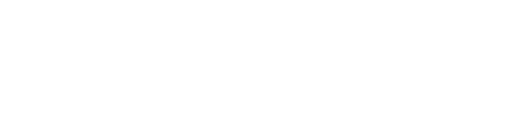 Leader Dogs for the Blind - LDB Leader
