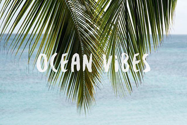 feeling like it should be friday  #islandinspired #islandlife #weekendvibes #oceanvibes #weekendwhereareyou