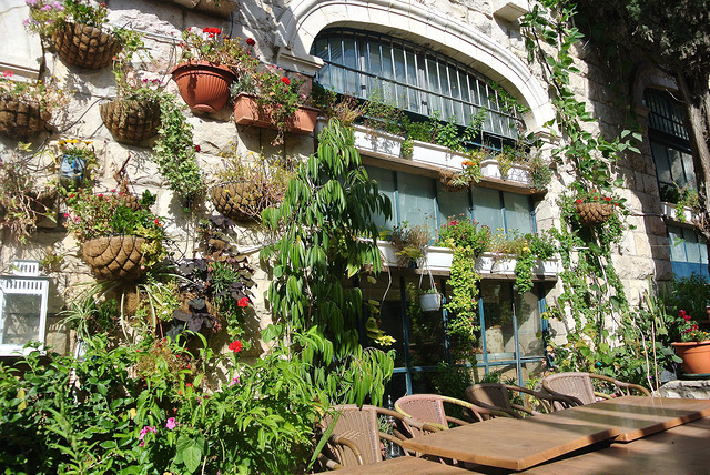 "Lush, living facade of Eucalyptus Restaurant. Photo by Christina Garofalo, courtesy            96              Normal   0           false   false   false     EN-US   X-NONE   X-NONE                                                                                                                                                                                                                                                                                                                                                                                                                                                                                                                                                                                                                                                                                                                                                                                                                                                                                 /* Style Definitions */ table.MsoNormalTable 	{mso-style-name:""Table Normal""; 	mso-tstyle-rowband-size:0; 	mso-tstyle-colband-size:0; 	mso-style-noshow:yes; 	mso-style-priority:99; 	mso-style-parent:""""; 	mso-padding-alt:0in 5.4pt 0in 5.4pt; 	mso-para-margin:0in; 	mso-para-margin-bottom:.0001pt; 	mso-pagination:widow-orphan; 	font-size:12.0pt; 	font-family:Calibri; 	mso-ascii-font-family:Calibri; 	mso-ascii-theme-font:minor-latin; 	mso-hansi-font-family:Calibri; 	mso-hansi-theme-font:minor-latin;}       Creative Commons"