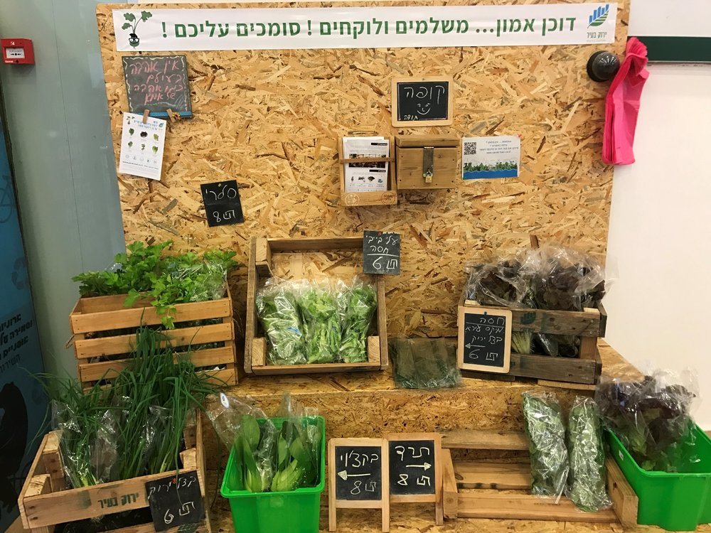 Farm stands at the Dizengoff Center sell rooftop veggies. Photo by Viva Sarah Press