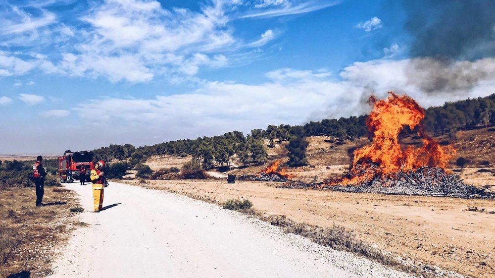 Small controlled fires were set as part of the international exercise, Middle East Forest Fires, in October 2017 in Israel. Photo by Omer Shapira