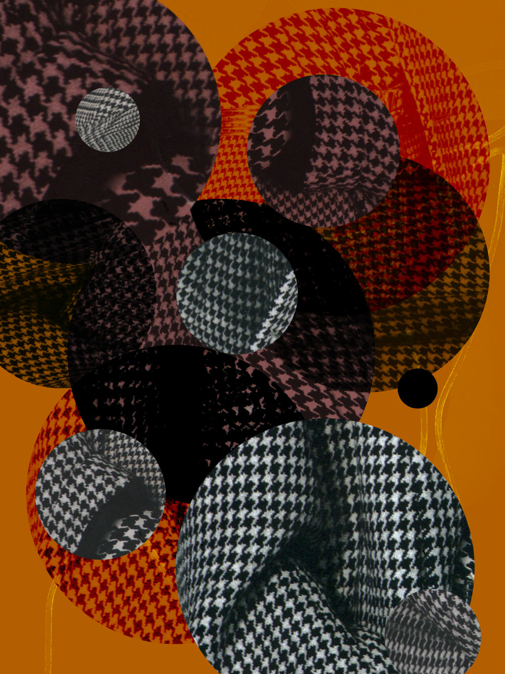 patterns_WILD2.jpg