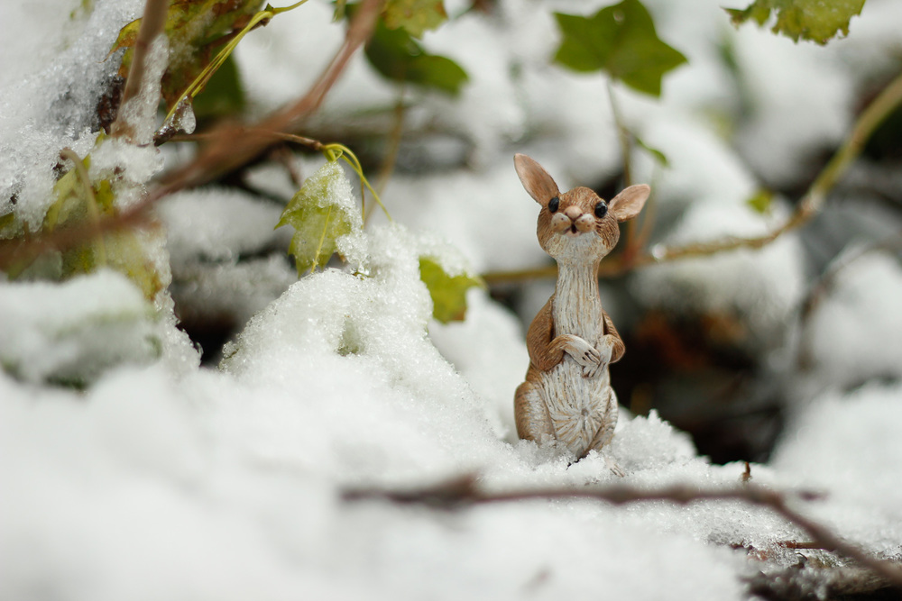 mouse-doll-snow panopoulos.jpg