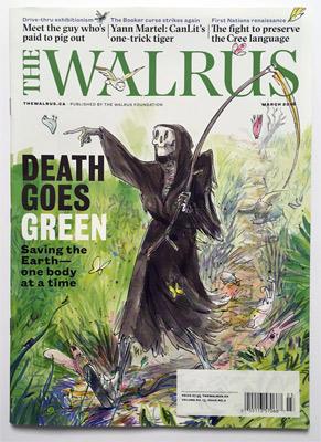 walrus_MED
