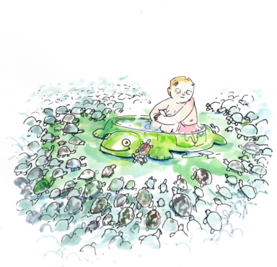 Turtle Pool <br>