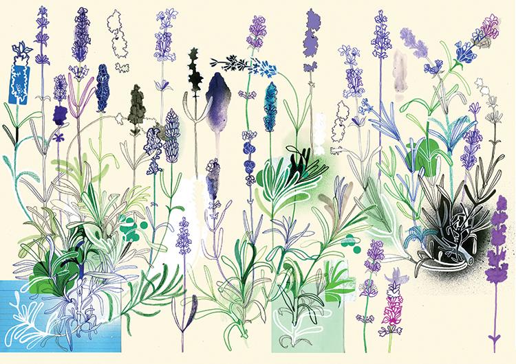 No. 2 Lavender <br> Forsman & Bodenfors