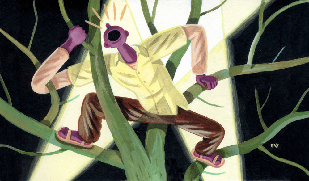 The Tree Man Outside My Window<br>The New Yorker