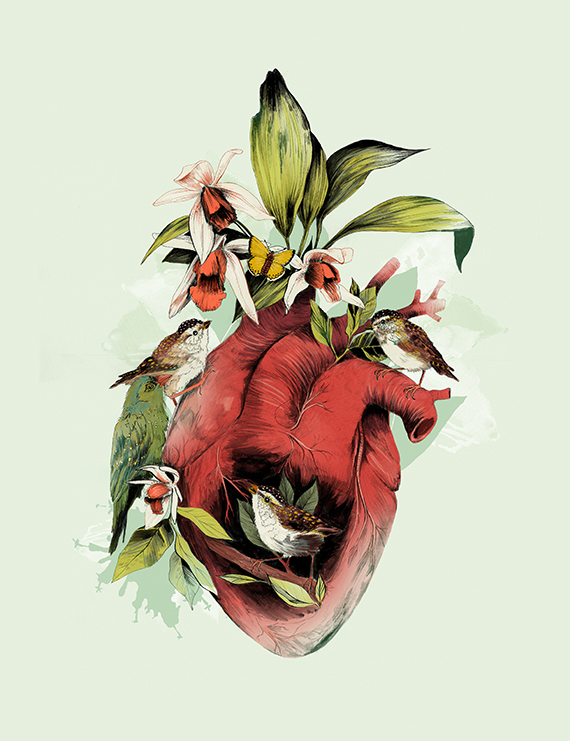 Heart of Birds