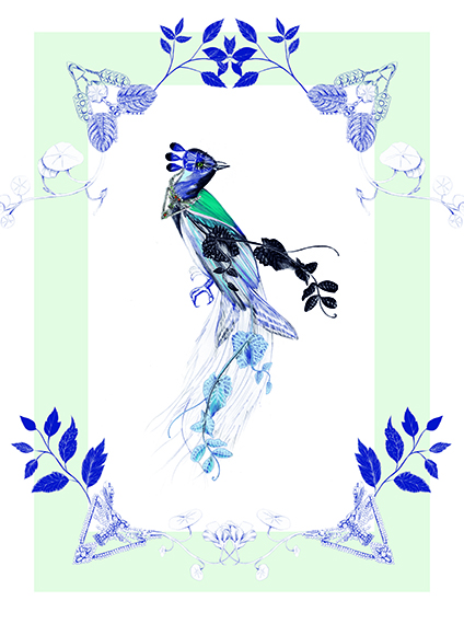 Magpie Bird Mint