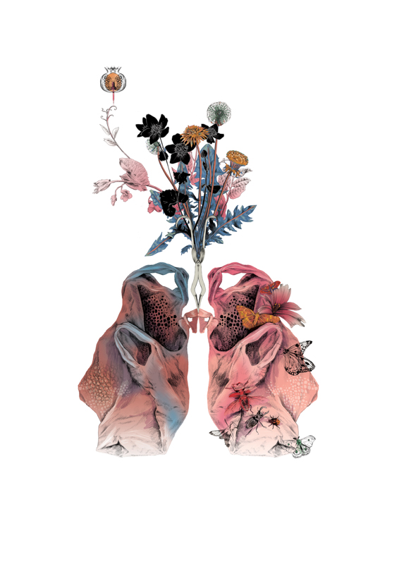 Lungs <br> Curie Museum
