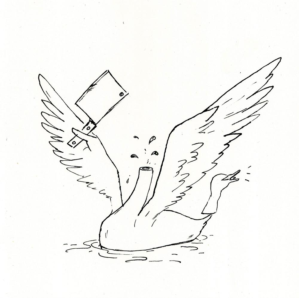 Cleaver Swan
