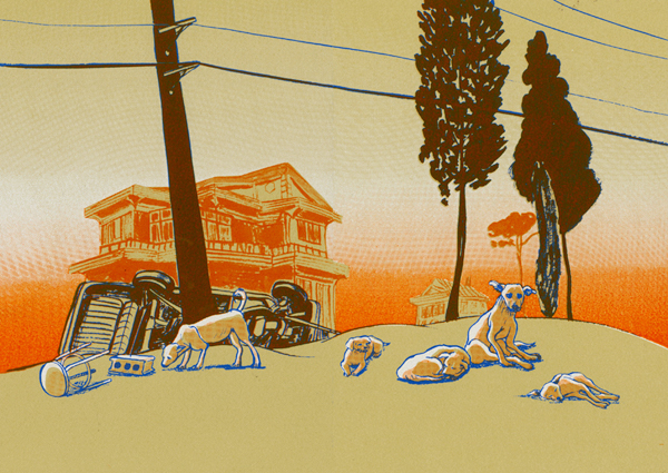 SOIW 50 2012 - ARTIST: Hye Jin ChungTITLE: The Stray Dog [Series, 3 of 3]