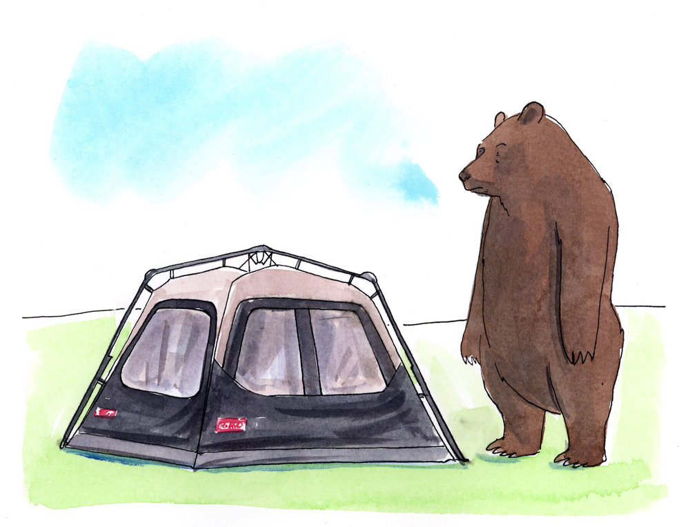ADCC 14 2015 - ARTIST: Graham RoumieuTITLE: Camping Series [2 of 2]CLIENT: Coleman Canada