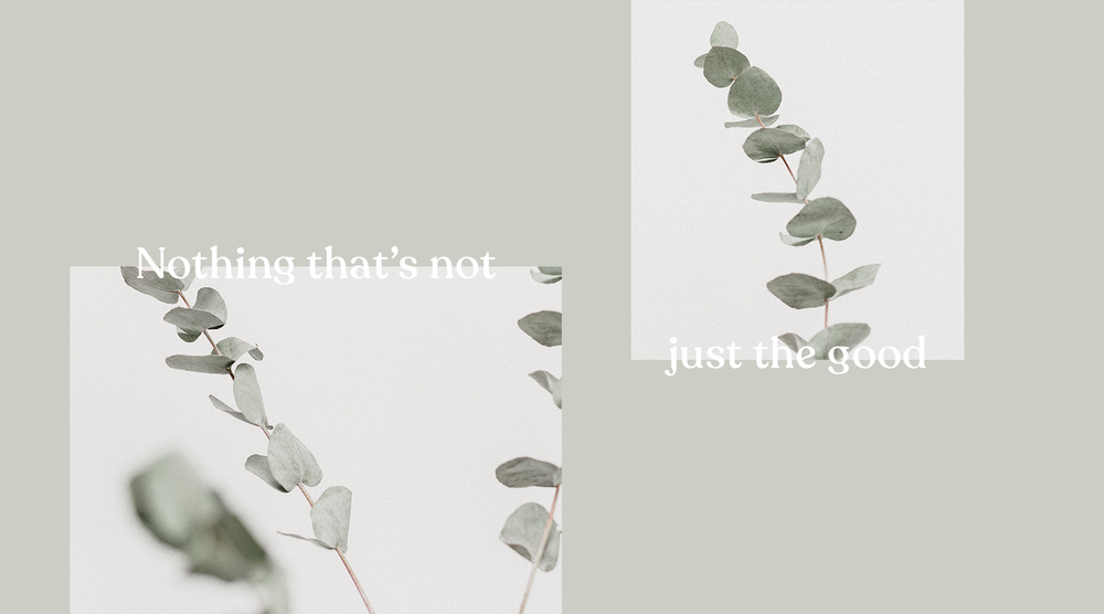 banner_01.png