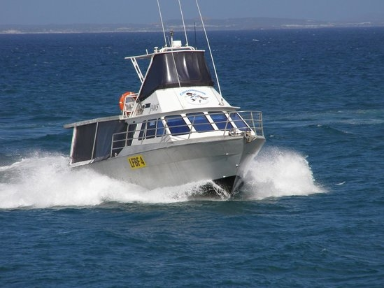 Fishing, Diving, Boat Charters -