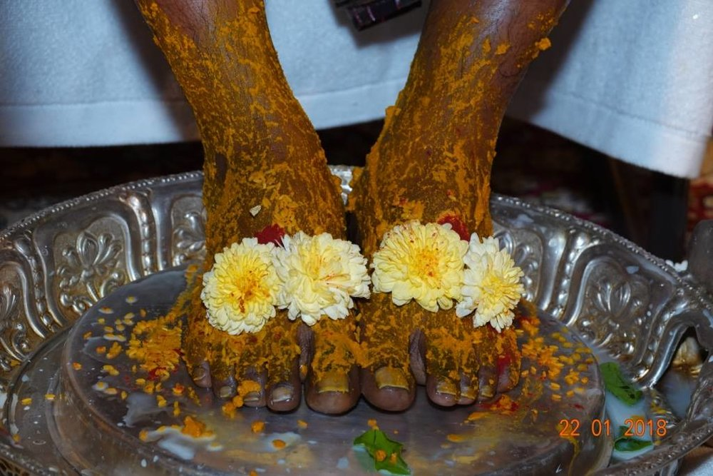 Lotus feet of divine mother