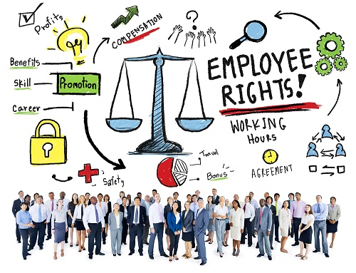 employment rights for federally regulated employees vey willetts