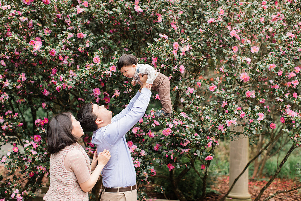 four corners photography liu family fall mini session 2017-56.jpg