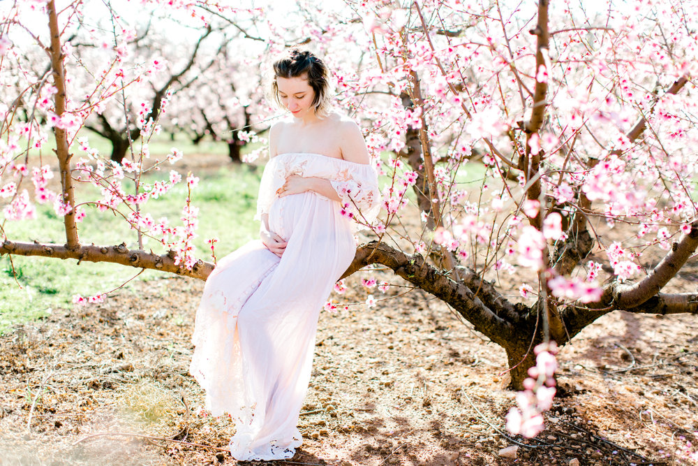 four corners photography peach blossom mini sessions peach blossom maternity session (17 of 25).jpg