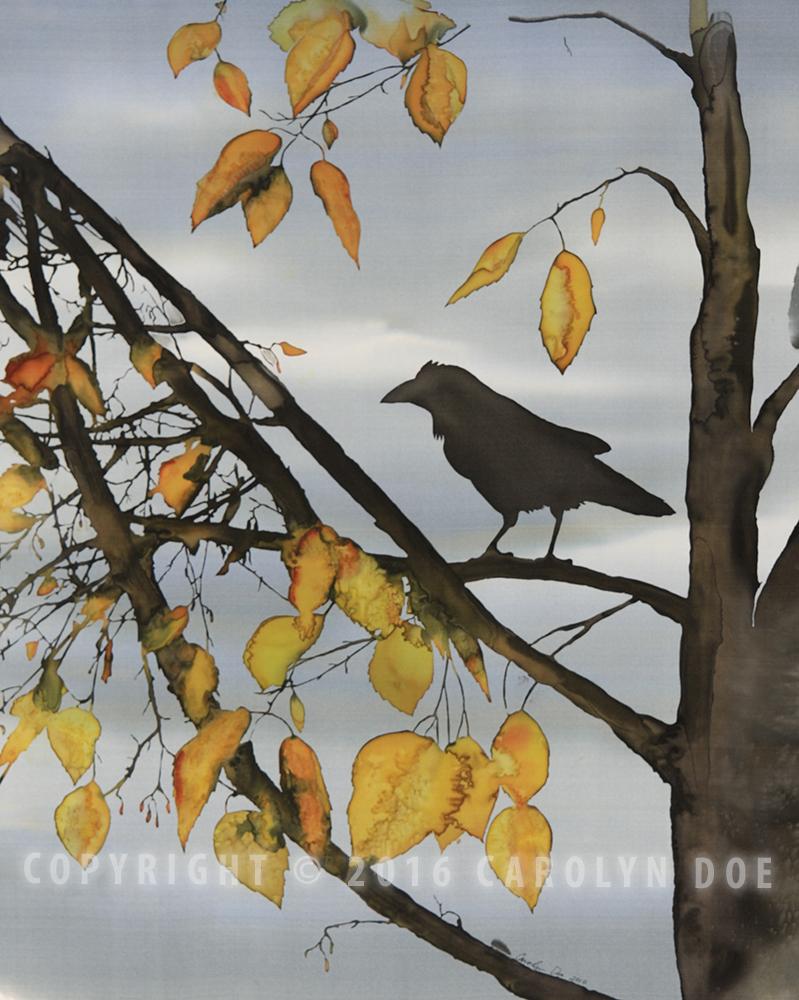 Raven in Yellow Birch