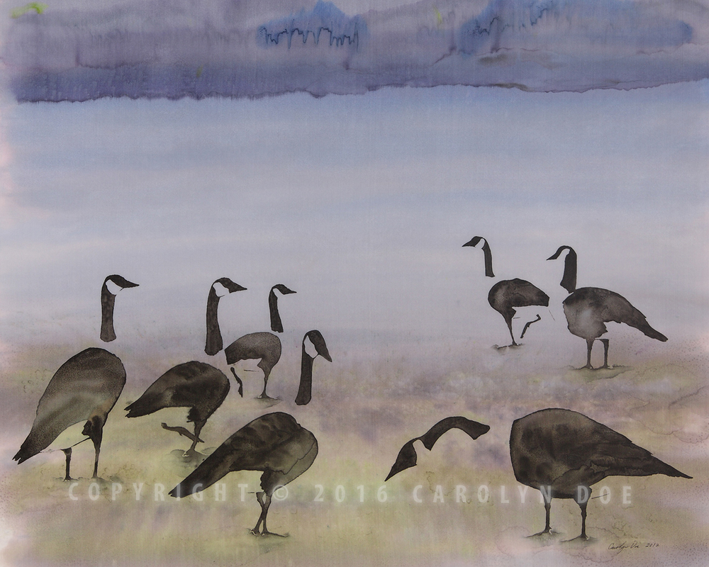 The Mystery of Migration, Geese