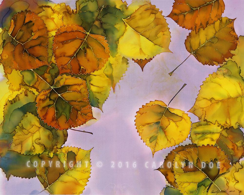 Autumn Cottonwood Leaves