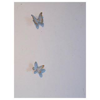 butterfly wall hooks