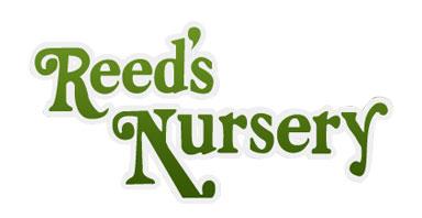Reed's Nursery