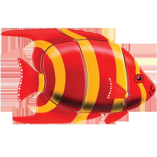 Angelfish (Red)