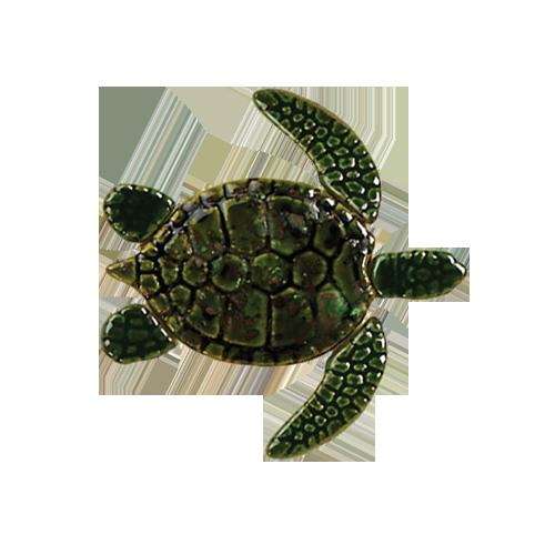Green Baby Sea Turtle