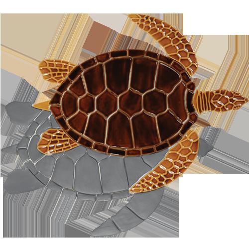 Brown Sea Turtle w/sh
