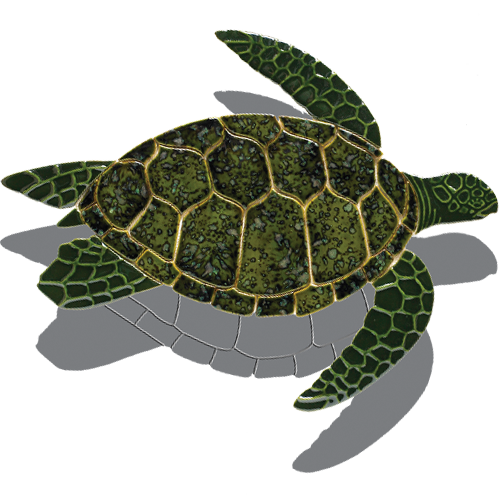 Turtle Side View w/sh