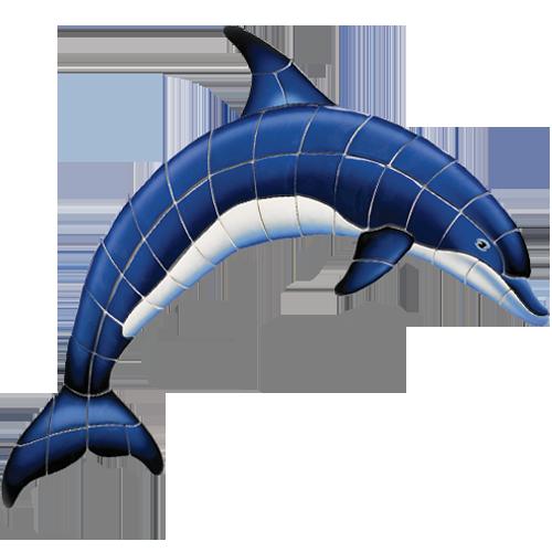 Blue Dolphin A