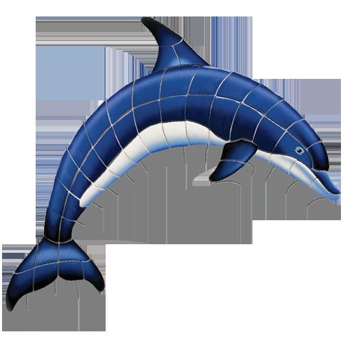 Blue Dolphin A w/sh