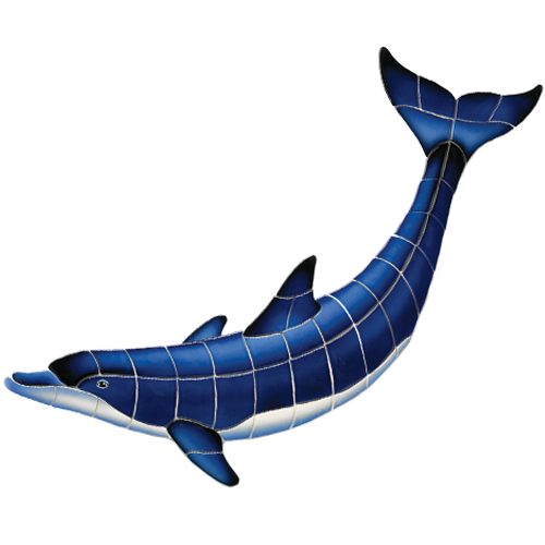Blue Dolphin B