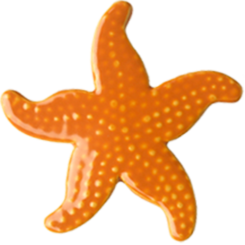 "5"" Orange Starfish"