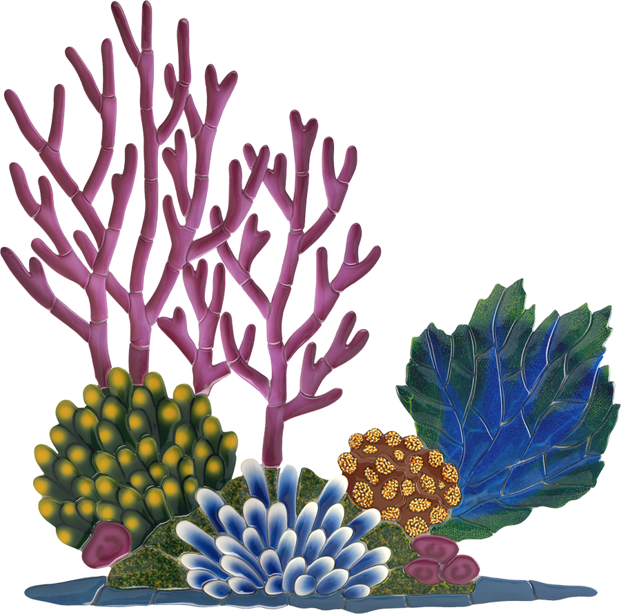 CR53 Coral Reef.png