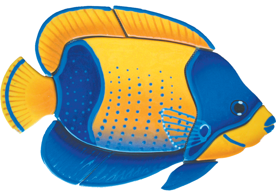 MA54  Majestic Angelfish.png