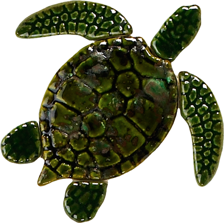 GT7-5  5in. Green Sea Turtle copy.png